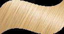 № 9.3 Golden Light Blond